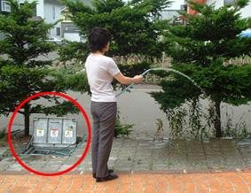 photo-natsu.jpg